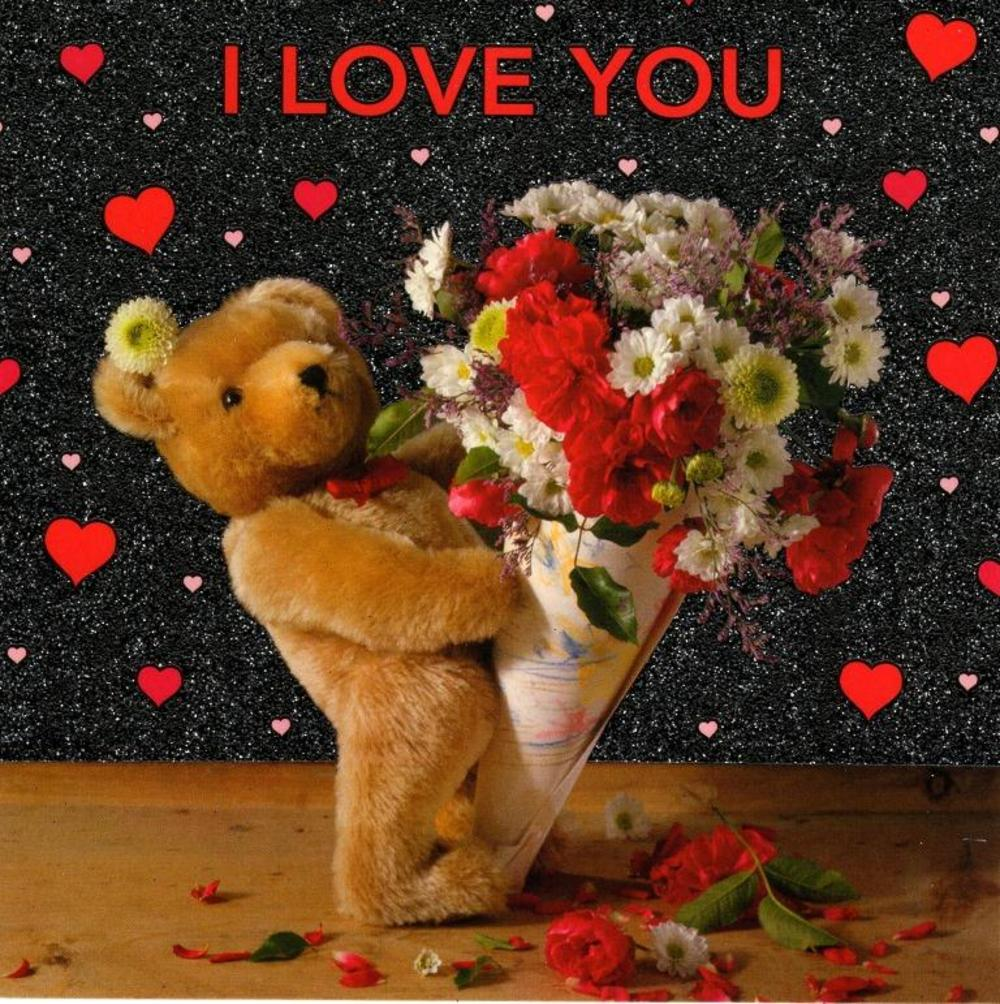 I Love You Cute Teddy Bear Valentine's Day Card