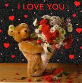 I Love You Cute Teddy Bear Valentine's Day Card