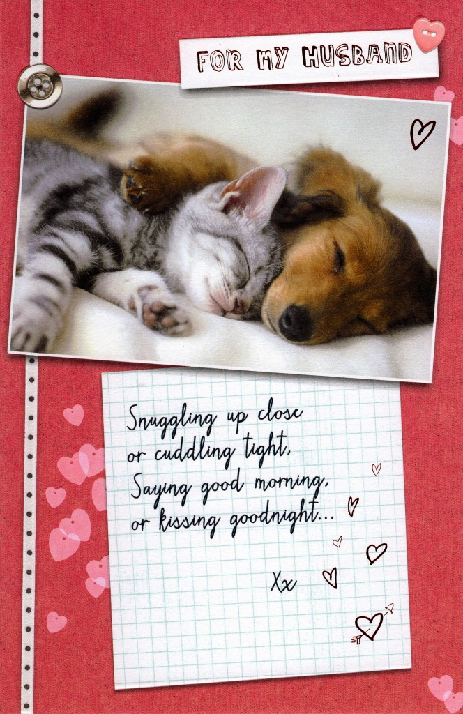 For My Husband Cat Dog Valentine S Day Card Cute Greeting Cards