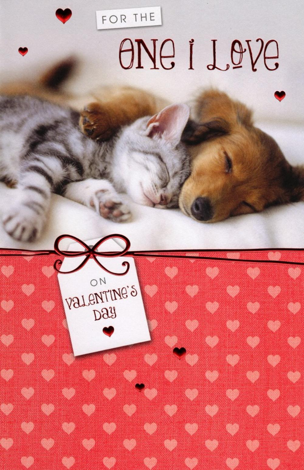 the one i love cat dog valentines day card - Dog Valentines Day Cards