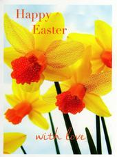 Pack of 5 Daffodil Happy Easter Greetings Cards