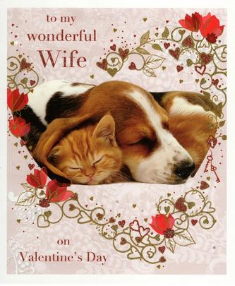 Wonderful Wife Dog & Cat Valentine's Greeting Card