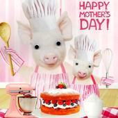 Baking Pigs Happy Mother's Day Card