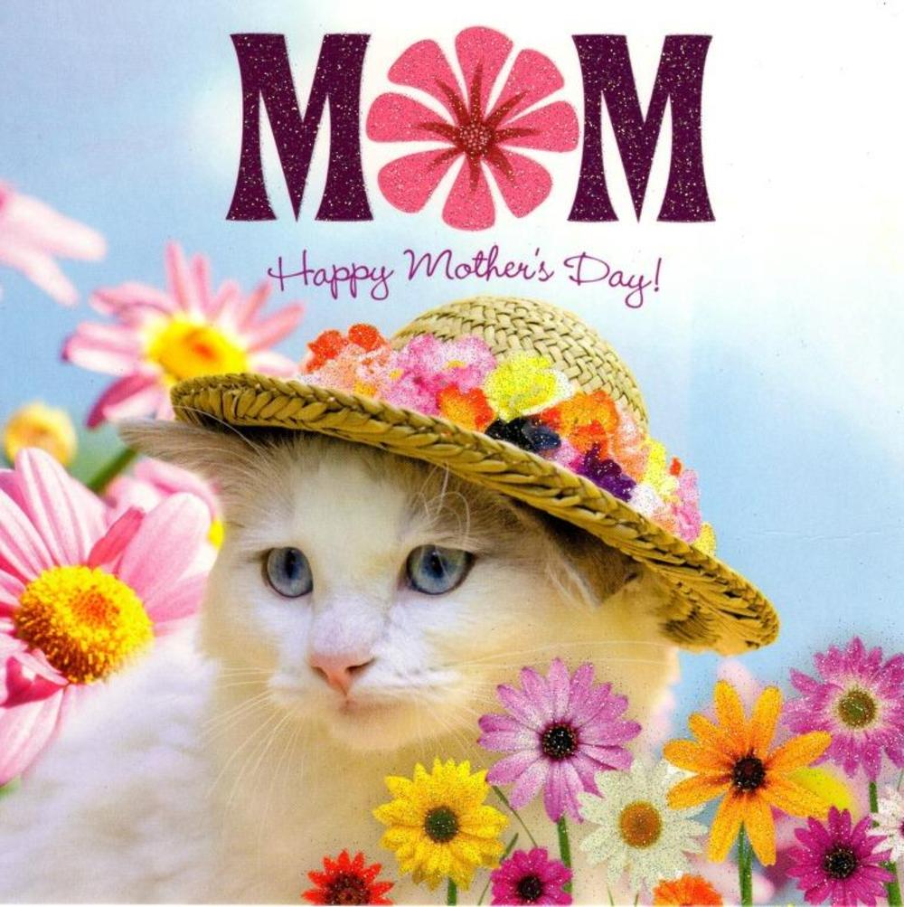 Mum Cat Happy Mother's Day Flittered Card