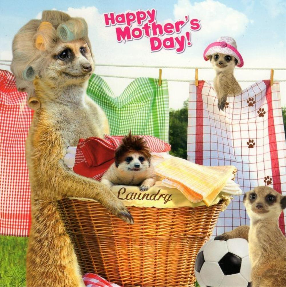 Fun Meerkat Happy Mother's Day Card