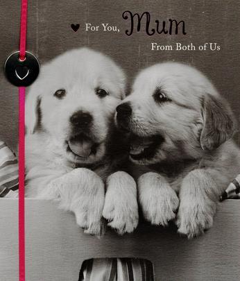 Cute Puppy Mum From Both Of Us Mother's Day Card