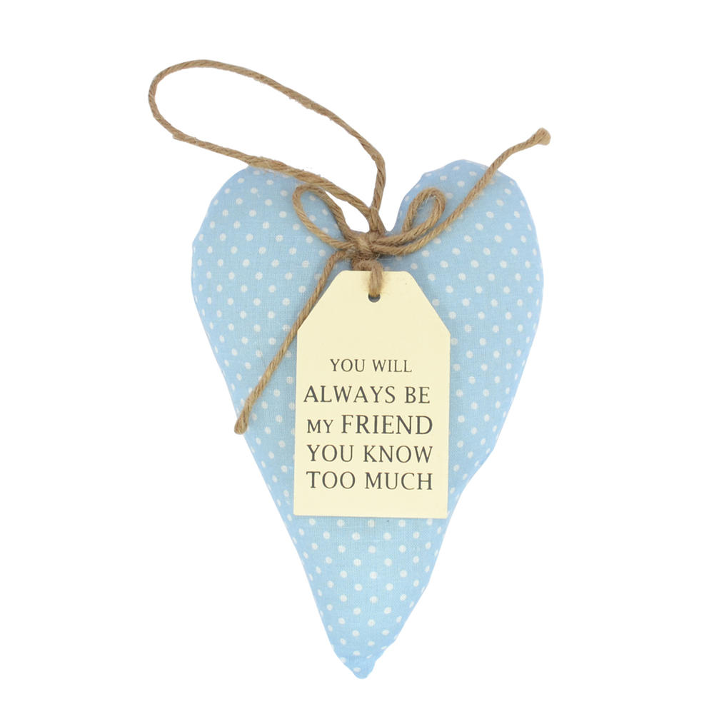 Special Friend Sentiments From The Heart Hanging Cushion