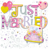 Just Married Wedding Day Greeting Card