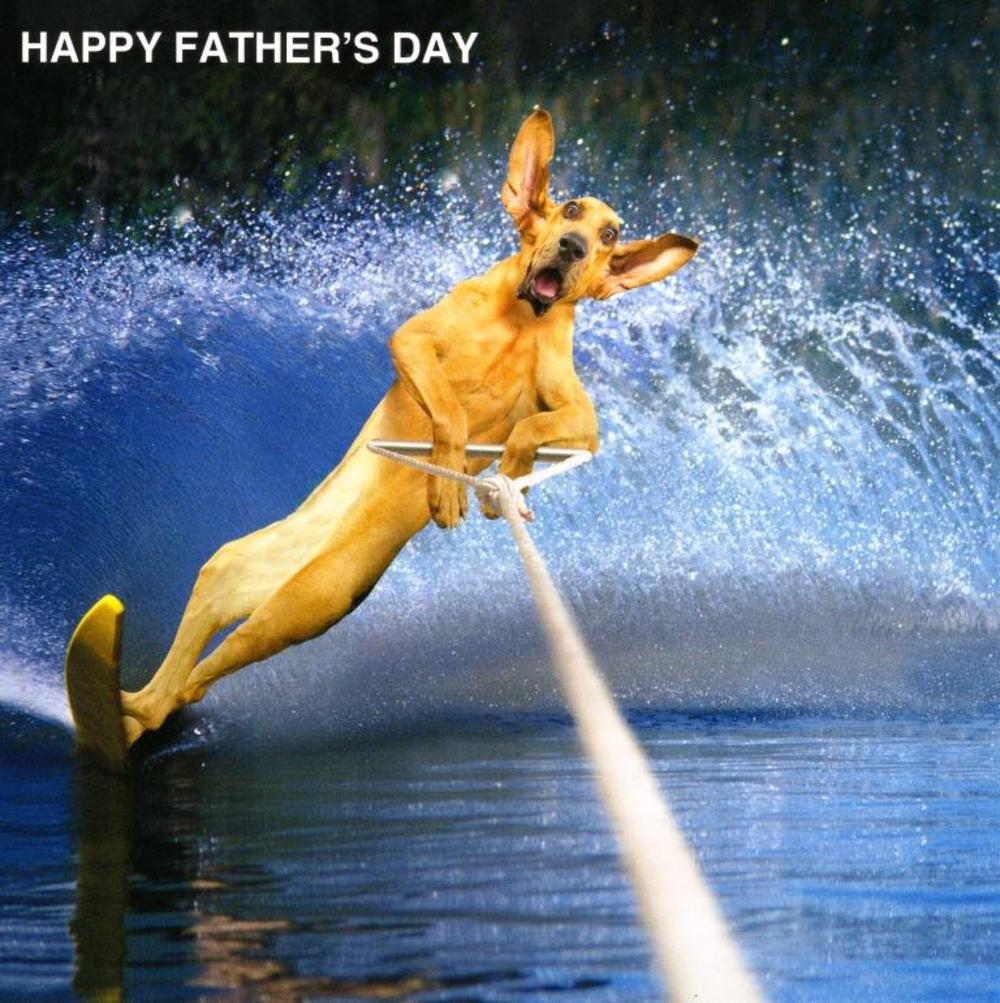 Funny Dog Happy Father's Day Card