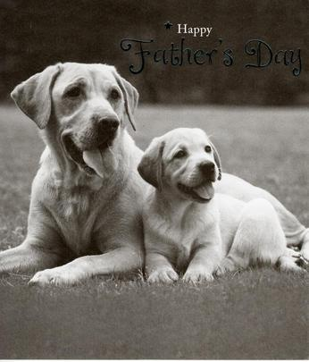 Cute Dogs Happy Father's Day Card