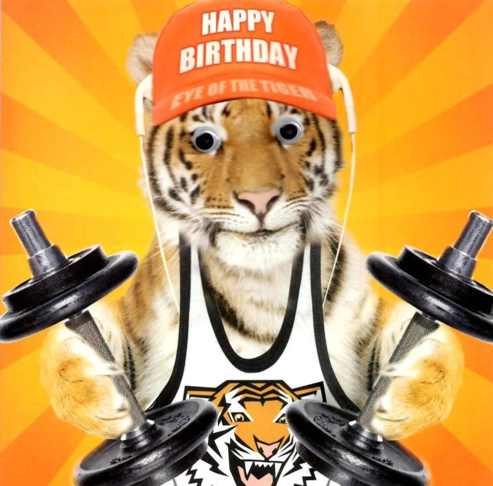 Eye Of The Tiger Googlies Birthday Card