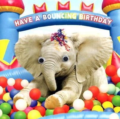 Ball Pit Bouncing Googlies Birthday Card