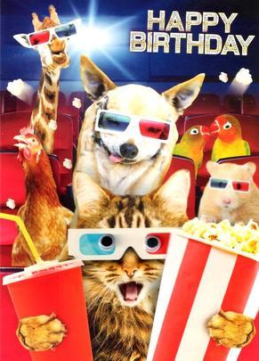 Scary Movie Googlies Birthday Card