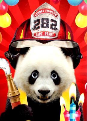 Captain Pandy Panda Googlies Birthday Card