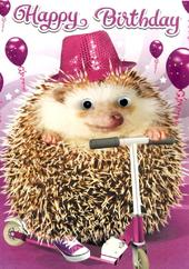 Scooting Hedgehog Googlies Birthday Card