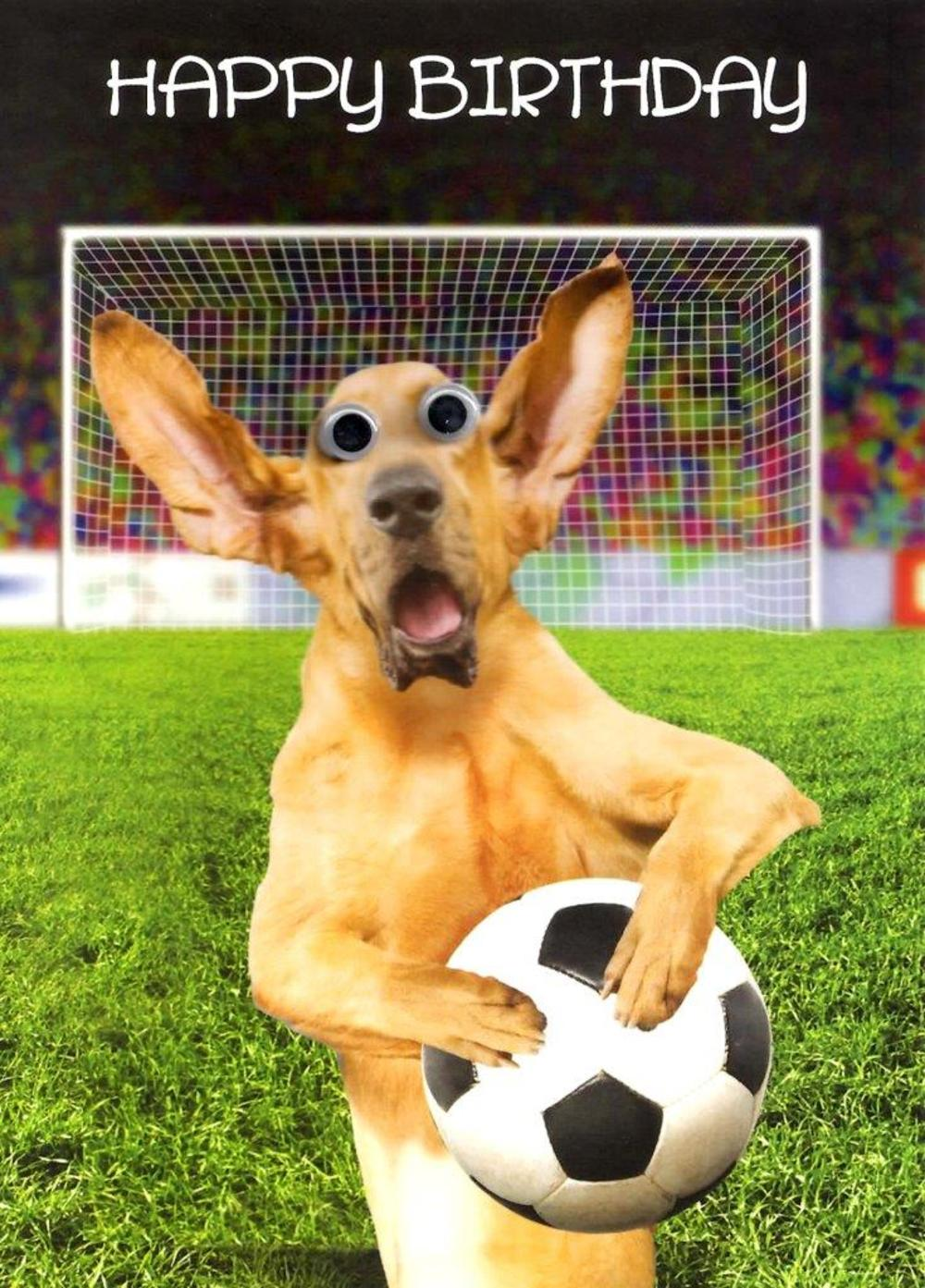 Dog & Football Googlies Birthday Card