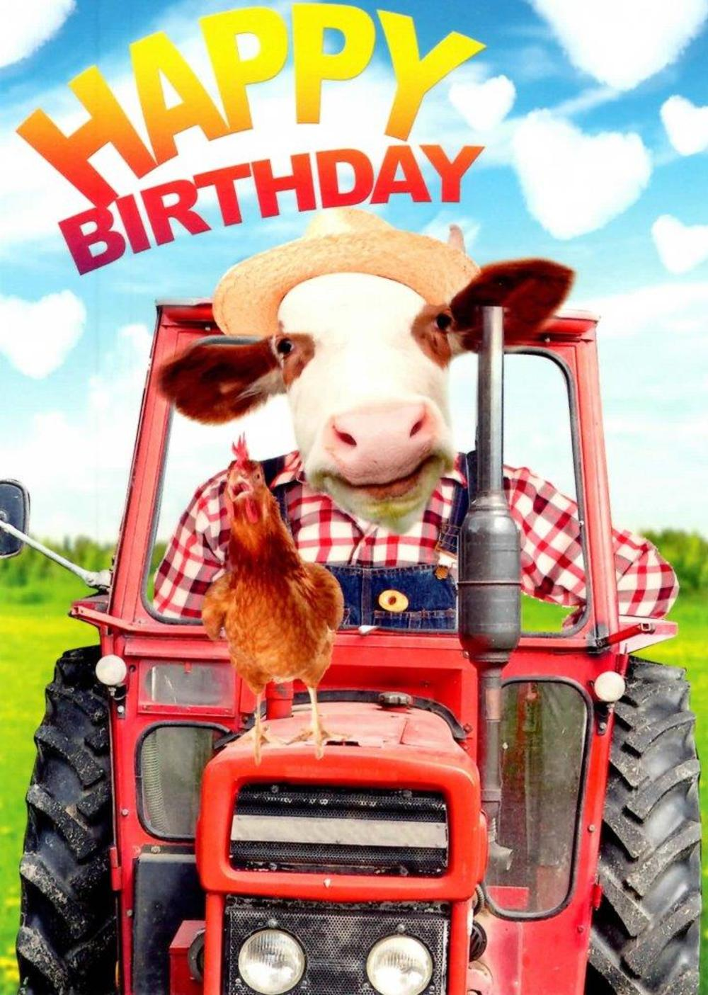 Farm Fun Happy Birthday Greeting Card