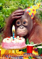 Chimp Birthday Tea Birthday Greeting Card
