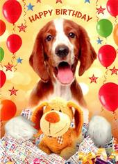 Cute Dog Happy Birthday Greeting Card