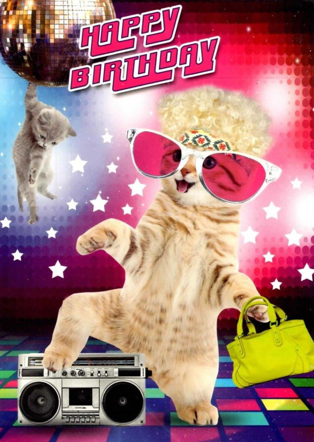 Disco Cats Happy Birthday Greeting Card Cards Love Kates