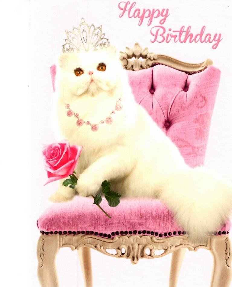Princess Pussy Cat Happy Birthday Greeting Card