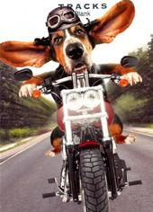Basset Biker Blank Greeting Card