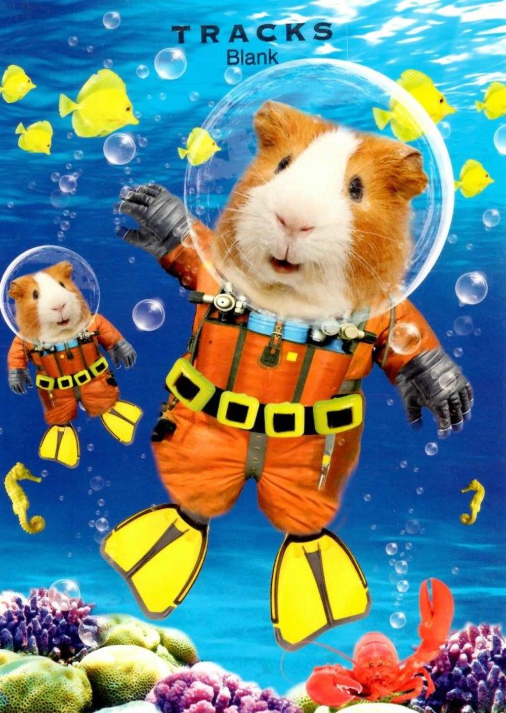 Diving Guinea Pigs Blank Greeting Card