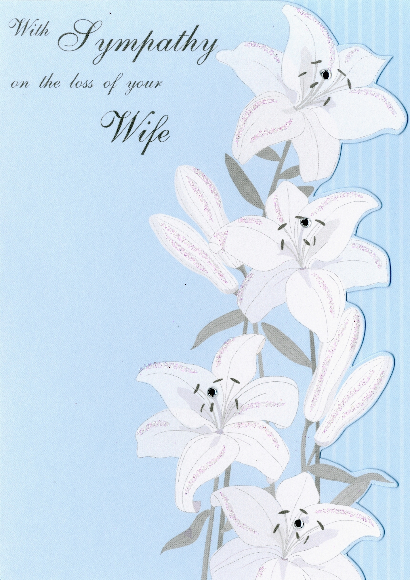 With sympathy on the loss of your wife greeting card cards love with sympathy on the loss of your wife greeting card kristyandbryce Images