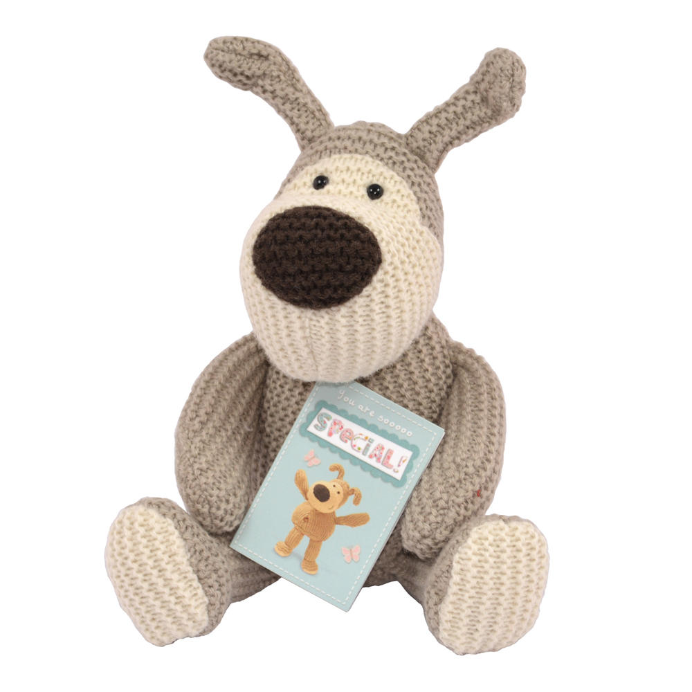 "Boofle You Are Sooooo Special 5"" Sitting Plush Toy With Tag"