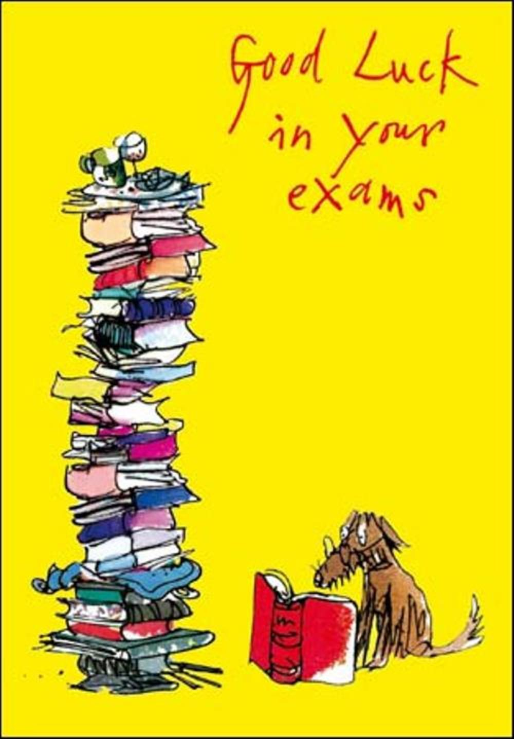 Quentin Blake Good Luck In Your Exams Greeting Card Cards Love Kates
