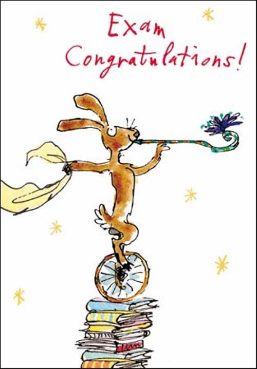 Quentin Blake Exam Congratulations Greeting Card Cards
