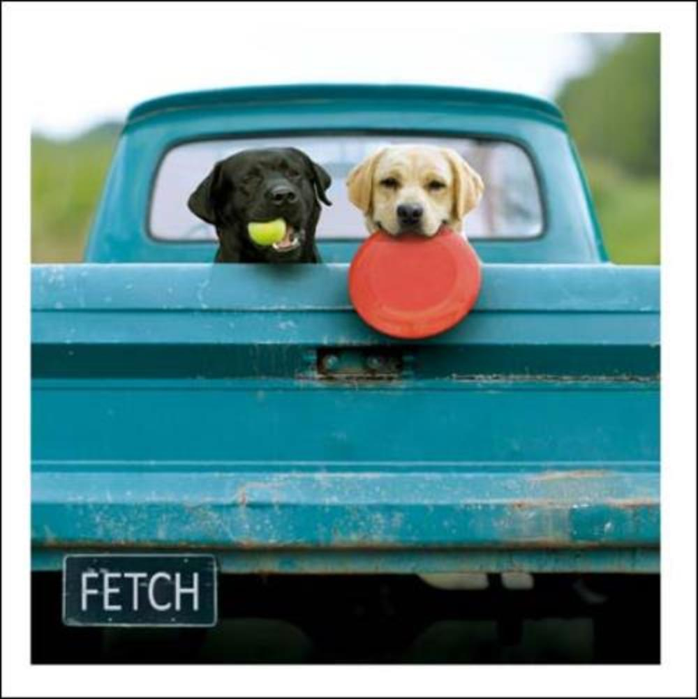 Lewie & Clark The Adventurers Loose Leashes Greeting Card
