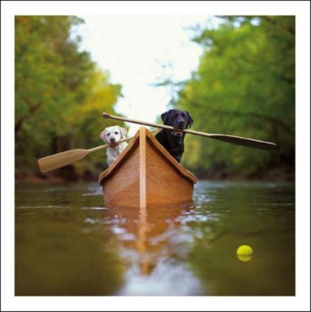 Lewie & Clark Explorers Loose Leashes Greeting Card