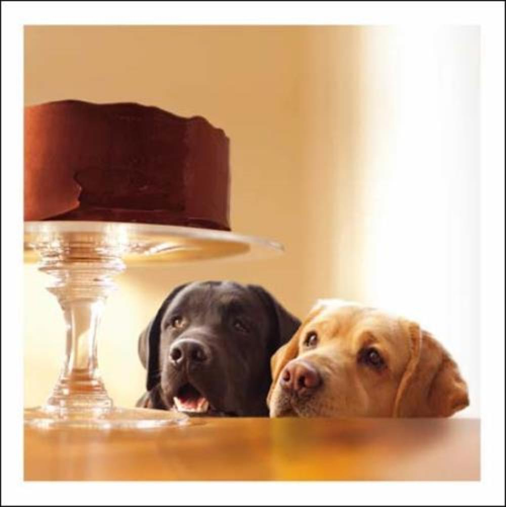 Lewie & Clark Forbidden Treasure Loose Leashes Greeting Card