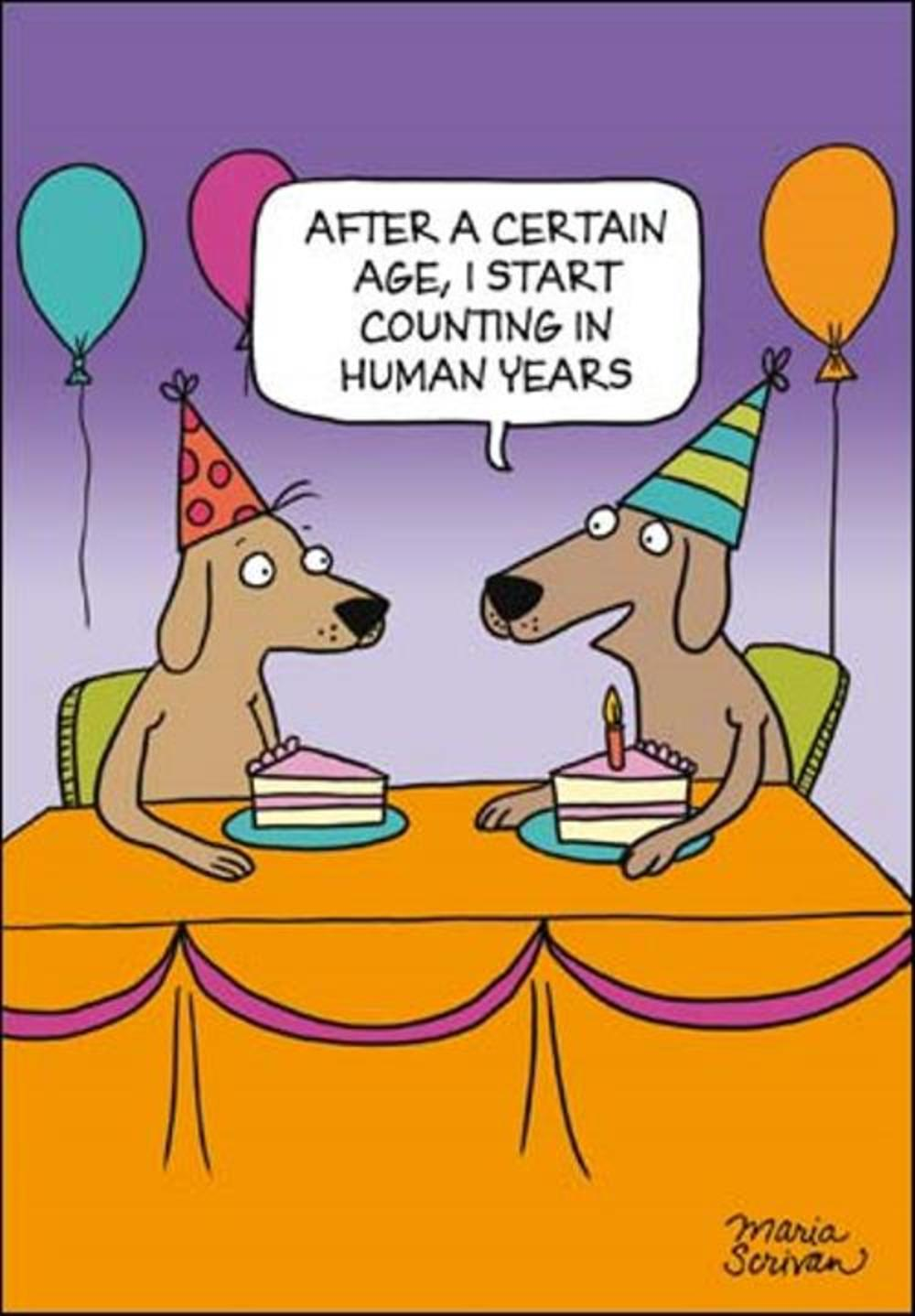 Start Counting In Human Years Funny Berger & Wyse Card