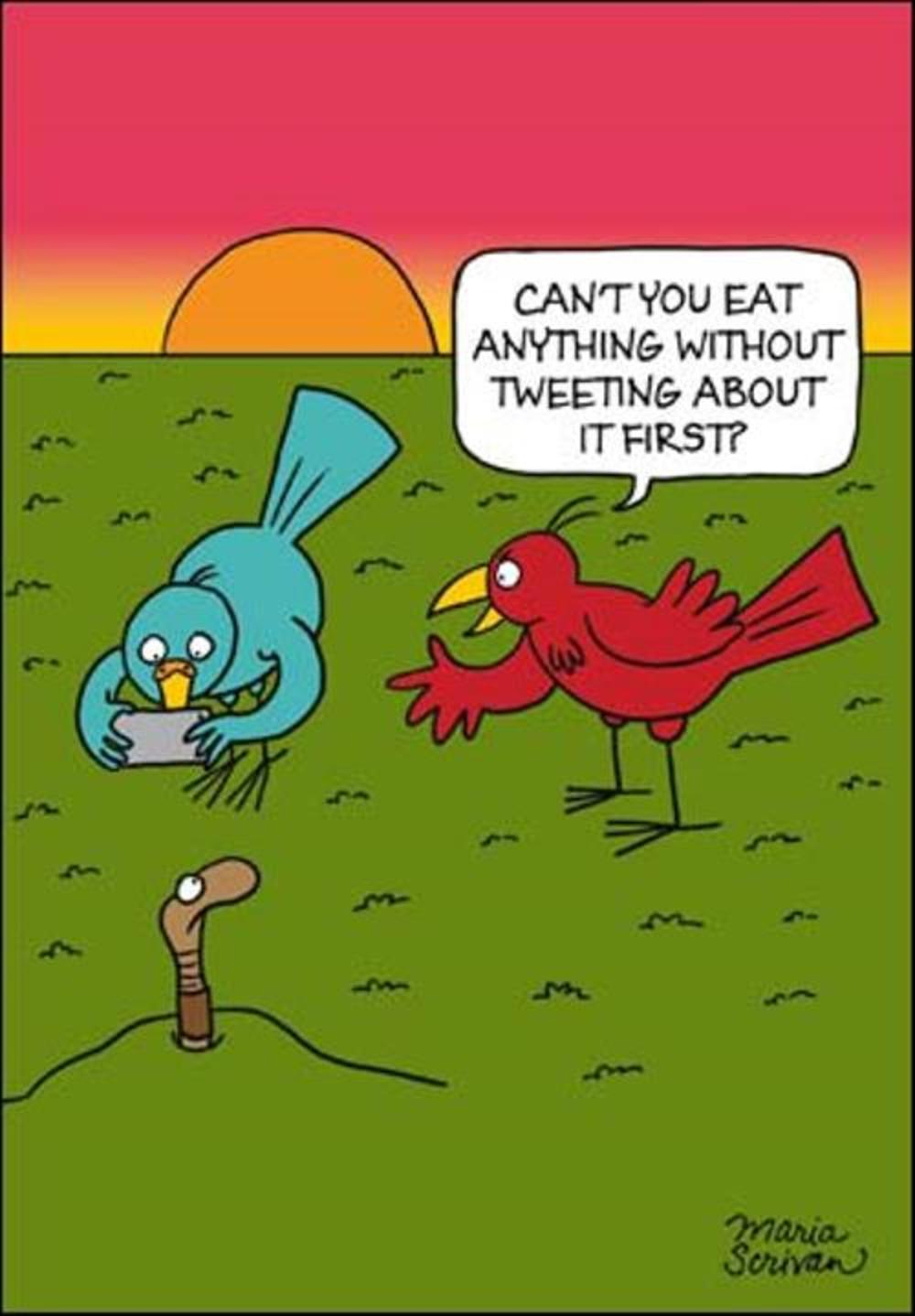 Eat Without Tweeting First Funny Berger & Wyse Card