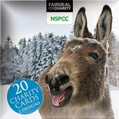 Box of 20 Donkeys NSPCC Fairdeal Charity Christmas Cards