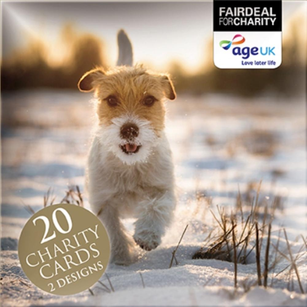 Box of 20 Winter Walkies Age UK Charity Christmas Cards