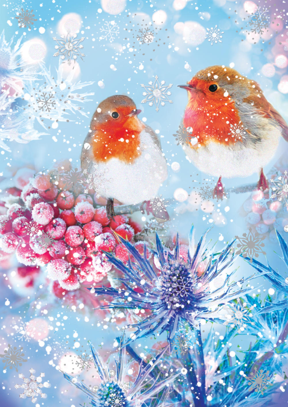 Pack of 5 Red Robin Traditional Christmas Cards