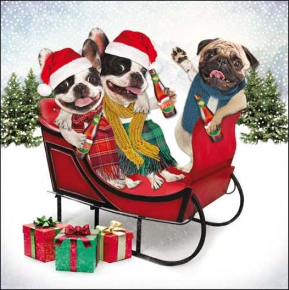 Pack of 5 Festive Dogs Princes Trust Charity Christmas Cards
