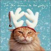 Pack of 5 Meowy Christmas British Heart Foundation Charity Christmas Cards