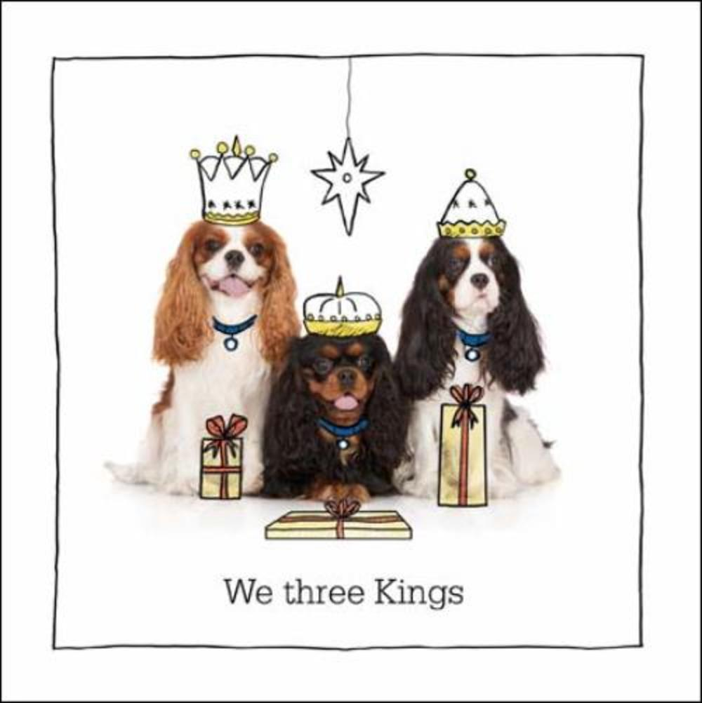 We Three Kings (Charles) Battersea Cats & Dogs Christmas Card
