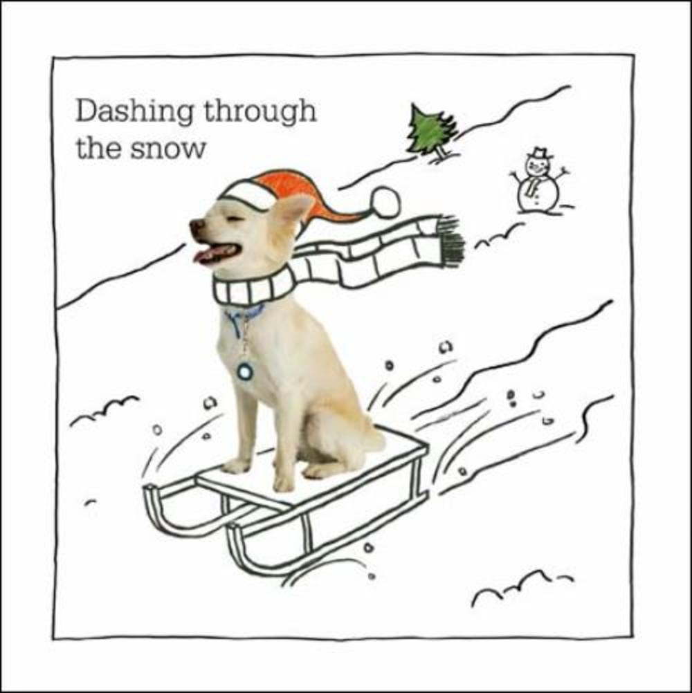 Dashing Through The Snow Battersea Cats & Dogs Christmas Card