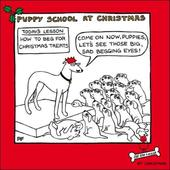 Puppy School Cartoon Dog Humour Christmas Greeting Card