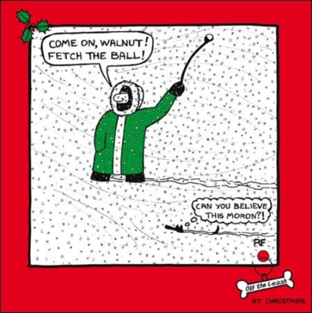 Fetch The Ball Cartoon Dog Humour Christmas Greeting Card