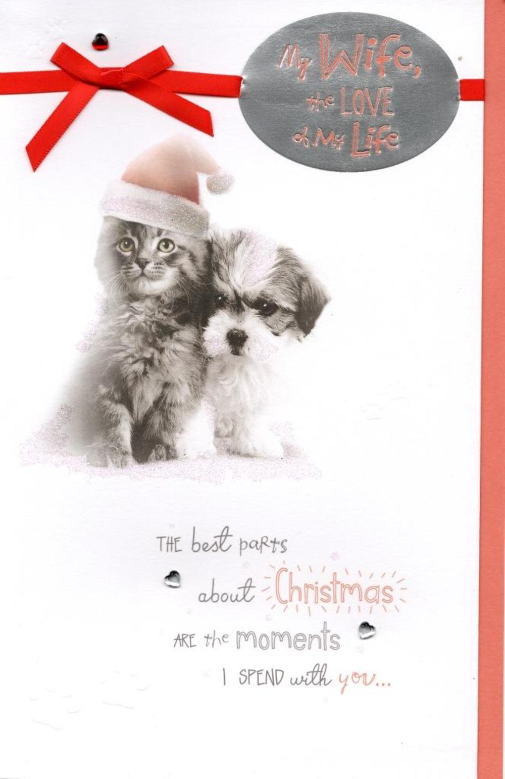 Cute wife love of my life christmas greeting card cards love kates cute wife love of my life christmas greeting card m4hsunfo