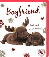 Boyfriend Cute Studio Pets Christmas Greeting Card