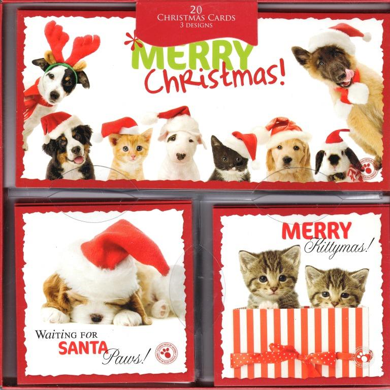 Box of 20 Cat & Dog Themed Assorted Christmas Cards 3 Designs Cats ...