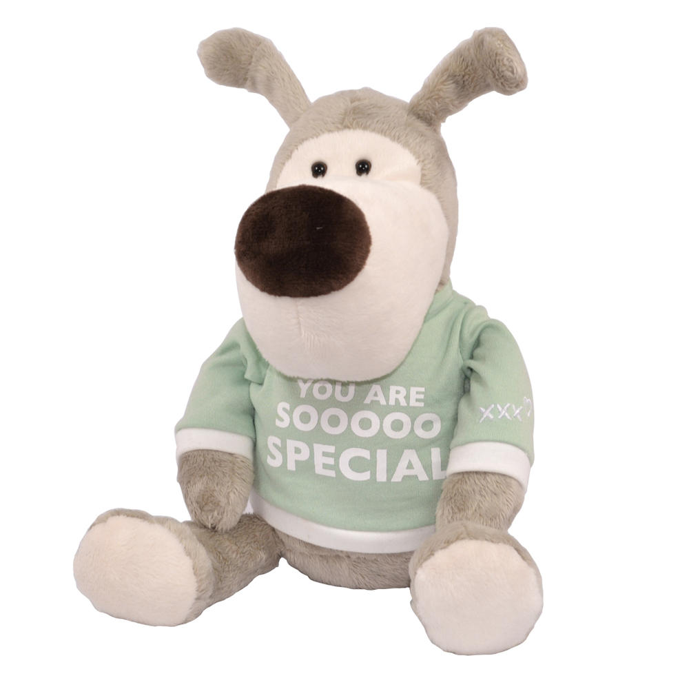"Boofle You Are Sooooo Special 8"" Sitting Lamboa Plush"