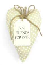 Best Friends Forever Sentiments From The Heart Hanging Cushion
